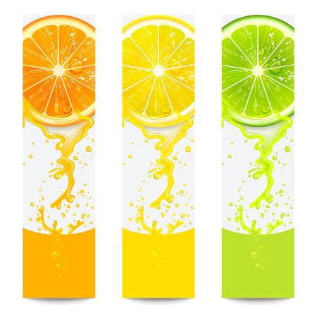 jugo de frutas: pancartas con cítricos frescos sobre un fondo blanco