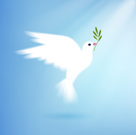 olive green: dove of peace with olive branch Illustration