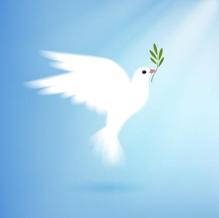 paloma: paloma de la paz con la rama de olivo