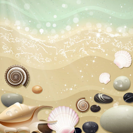 pebbles: summer sea beach with shells and pebbles