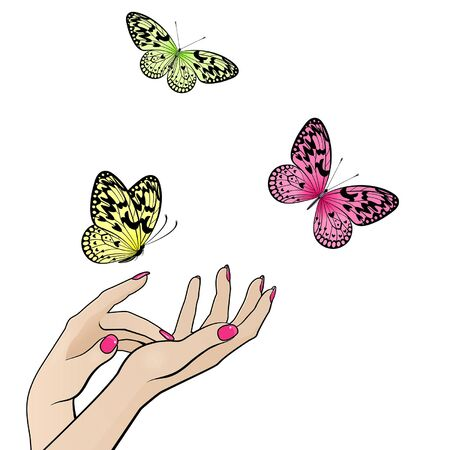 female hands with flying colorful butterflies on white background