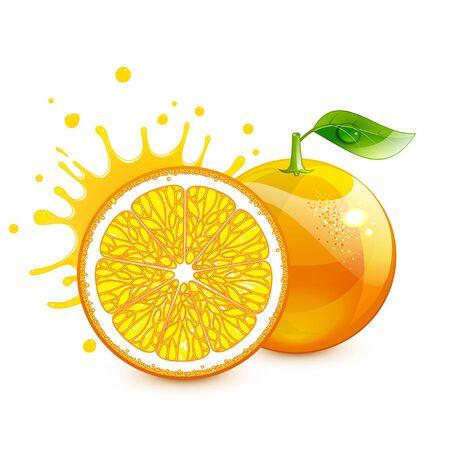 stylized juicy orange and its half on a white background Ilustração