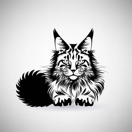 portrait of a cat with a predatory gaze on a light background