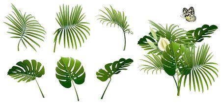set of branches of tropical plants and a butterfly on white background