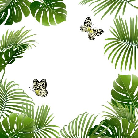banner of tropical plants and butterflies on a white background