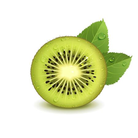 juicy kiwi fruit with green leaves on a white background