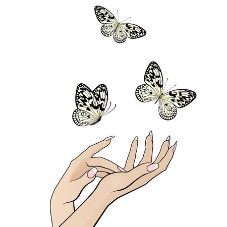 beautiful female hands release a flock of butterflies on a white background Illustration