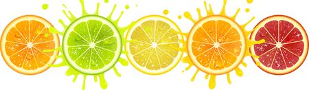 banner with citrus fruits on a white background