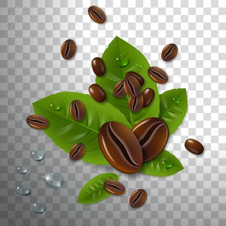 Coffee beans with green coffee leaves on a transparent Illustration