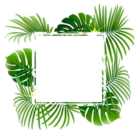 banner with tropical plants and palm branches on a white background