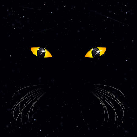 mysterious eyes of a cat on a background of space