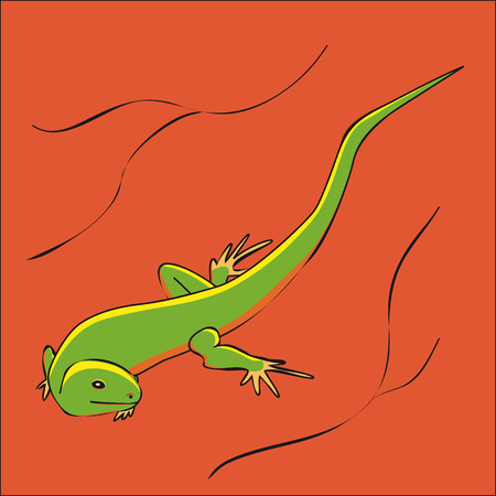 desert lizard: A green lizard in desert Illustration