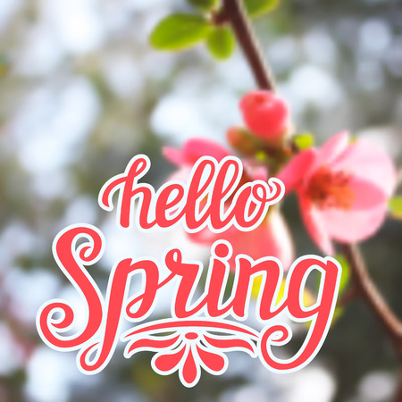 hello: Hand lettering typography poster Hello spring on blurred background. For posters, cards, prints, t shirt design, home interior decor, bags, pillows. Vector Illustration