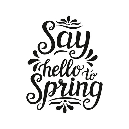 say hello: Hand lettering typography poster. Inspirational quote  Say hello to spring  isolated on white background. For posters, cards, t shirt design, home interior decor, bags, pillows. Vector