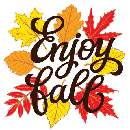 Enjoy fall. Hand lettering quote with fall leaves on white background. Vector typography for posters, banners, greeting cards 矢量图像
