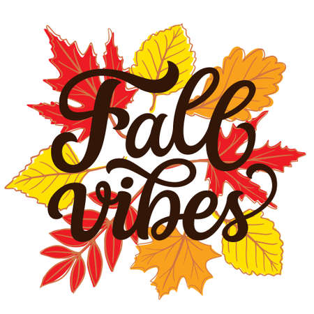 Fall vibes. Hand lettering quote with fall leaves on white background. Vector typography for posters, banners, greeting cards