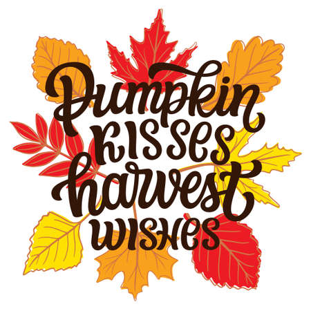 Pumpkin kisses harvest wishes. Hand lettering quote with fall leaves on white background. Vector typography for posters, banners, greeting cards, t shirts, clothes