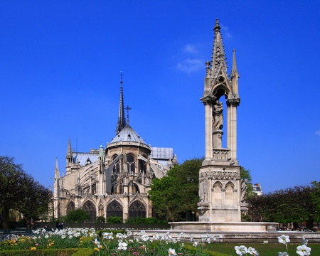 Cathedral Notre Dame photo