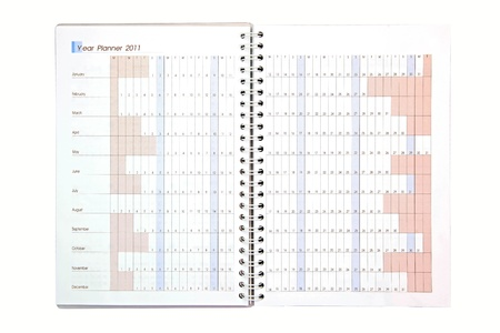 yearly: isolated yearly business project planner book