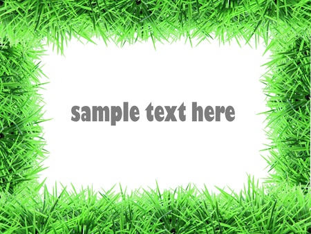 fake grass frame Stock Photo - 8968009