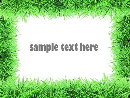 fake grass frame Stock Photo - 8968009