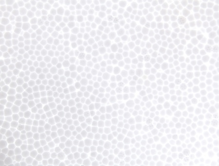 synthetically: seamless Polystyrene foam texture background