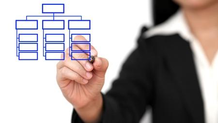 organigrama: Mujer de negocios asi�ticos organigrama de dibujo