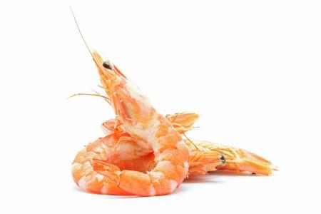 Crevettes cuites sur fond blanc