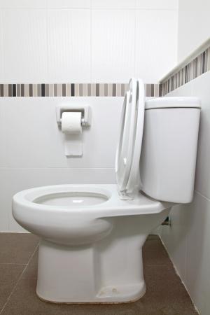 inodoro: Interior del asiento de aseo y papel de seda en el ba�o