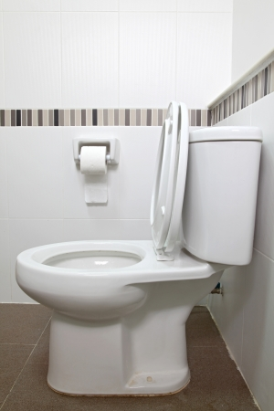 Interior of Toilet seat and tissue paper in bathroom
