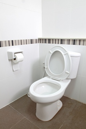 Interior of Toilet seat and tissue paper in bathroom photo