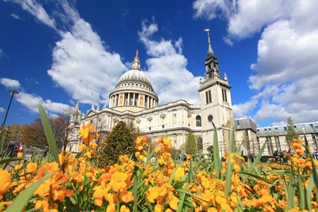 St. Paul Cathedral with Yellow Flower garden in London England United Kingdom photo