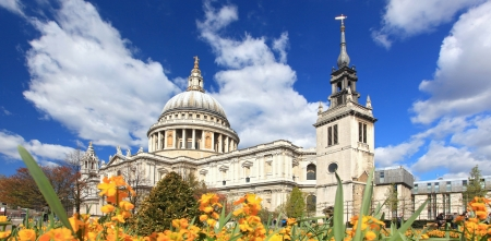 Panorama of St. Paul Cathedral with Yellow Flower garden in London England United Kingdom photo