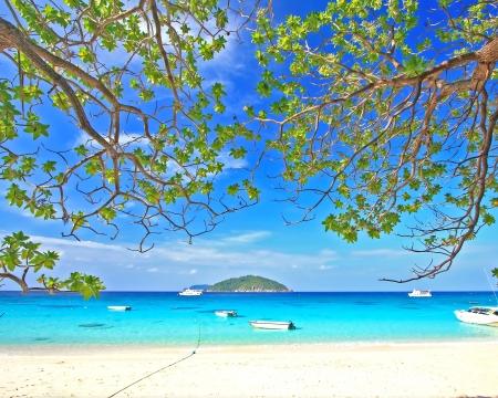 similan islands: Similan National Park, paradise island located south of Thailand