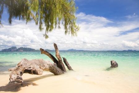 Beautiful tropical white sand beach at Trang andaman sea Thailand Stock Photo - 16686708