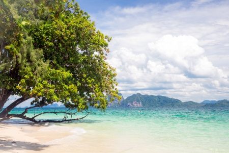 Beautiful tropical white sand beach at Trang andaman sea Thailand Stock Photo - 16686712