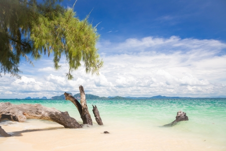 Beautiful tropical white sand beach at Trang andaman sea Thailand Stock Photo - 17162626