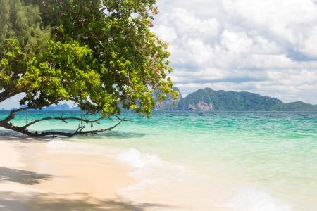 Beautiful tropical white sand beach at Trang andaman sea Thailand Stock Photo - 17162629