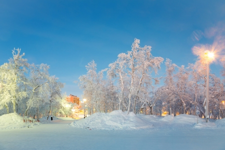 snow field: Winter landscape City Garden in Kiruna Sweden