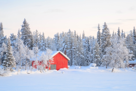 Winter landscape with house at Kiruna Sweden lapland Stock Photo - 17481582