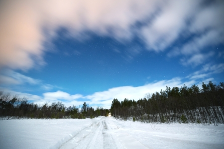 Winter landscape of Forest and star in Lapland Kiruna Sweden Stock Photo - 17644740