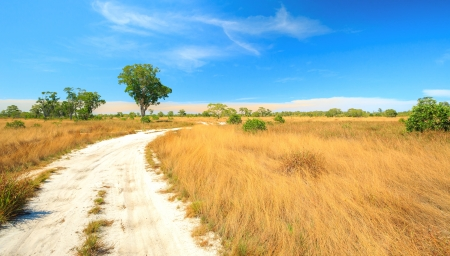 southern thailand: Panorama Landscape of Savannah field in Southern of Thailand near Phuket