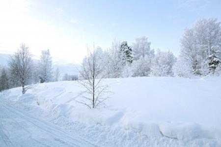 kiruna: Winter landscape at Kiruna Lapland Sweden Stock Photo