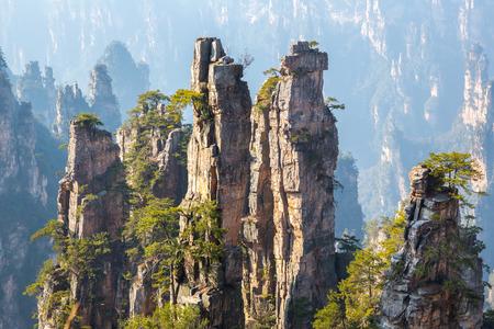 china landscape: Zhangjiajie National forest park at Wulingyuan Hunan China Stock Photo