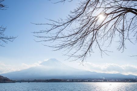 mt fuji: Mountain Fuji fujisan from kawaguchigo lake at Yamanashi Japan