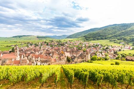 rhone: Riquewihr in the heart of the Alsatian vineyard Alsace France