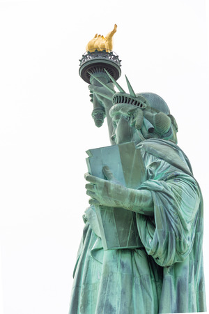 statue: The Statue of Liberty in New York City USA