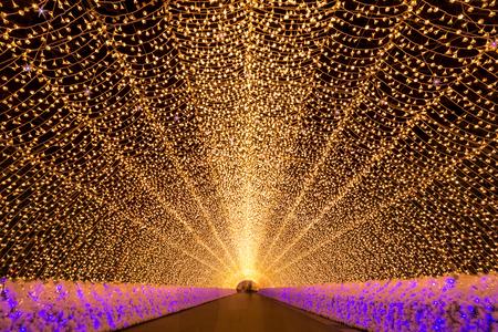 koyo: Nagoya, Japan. Nabana no Sato garden at night in winter