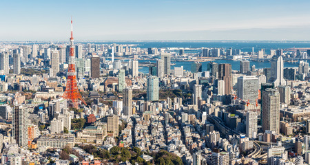 Tokyo Tower with skyline in Japan Panorama 版權商用圖片 - 55454003