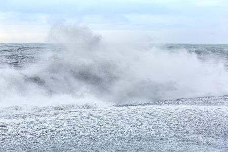granola: Onda grande en la playa de Islandia negro